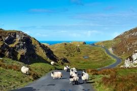Slieve League, Sliabh Liag, Donegal Marine Tourism